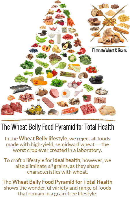 Wheat Belly Diet Food Pyramid